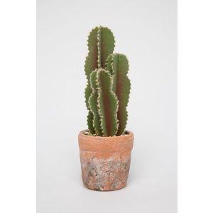 Medicine - Realisztikus kaktusz imitáció Basic kép