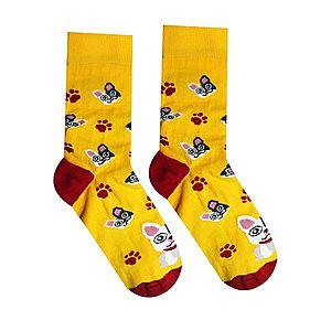 Vidám zokni bulldogmintával - sárga - Méretet 35-38 kép